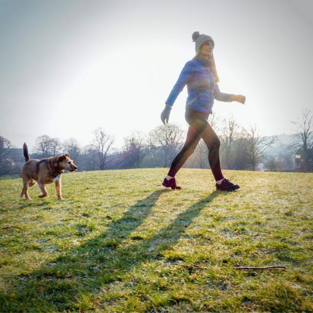 Få-en-sund-hund-og-træning-på-gåturen