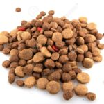 15801488 dry dog food on white background