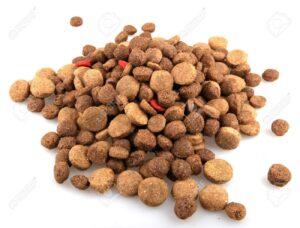 15801488 dry dog food on white background