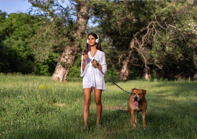 podcast anbefalinger til hundeluftning