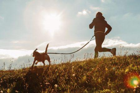 Canicross løb med hund MÆT