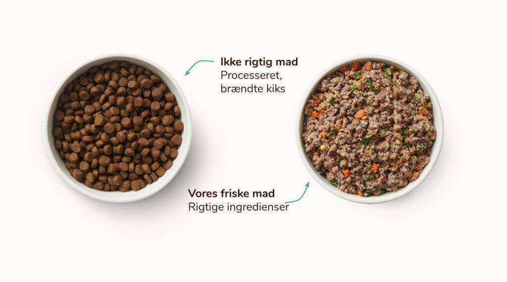 Tør vs. Frisk, let opvarmet hundefoder