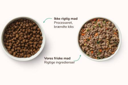 Tør vs. Frisk, let opvarmet hundefoder - MÆT