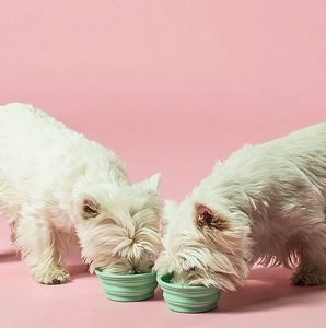 Hunni MÆT Pets frisk hundemad